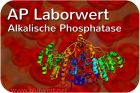 Alkalische Phosphatase