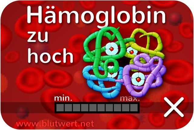 Hämoglobin erhöht