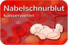 Nabelschnurblut Stammzellen