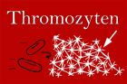 Was sind Thrombozyten?