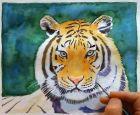 Tiger malen