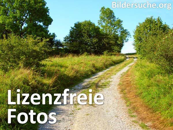 Lizenzfreie Fotos kostenlos