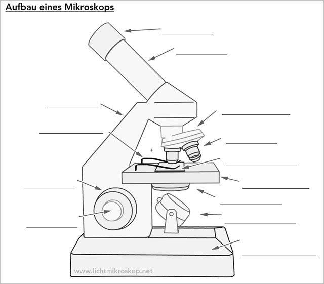 Mikroskop Beschriftung
