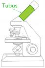 Tubus Mikroskop