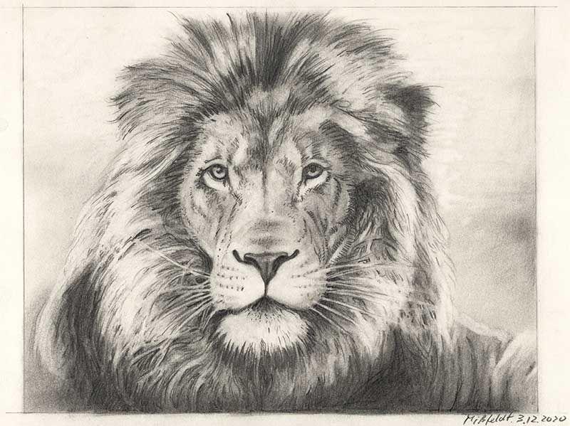 Zeichnung Bleistift
